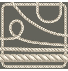 Twisted rope of different shapes vector image