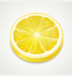 Lemon juicy slice realistic fruit vector