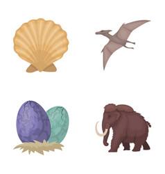Prehistoric shell dinosaur eggspterodactyl vector