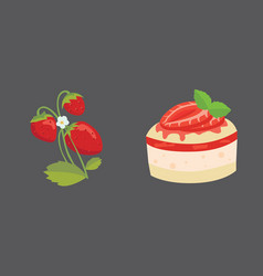 Strawberry and cake isolated vector