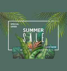 summer sale banner palm leaves discount frame vector image