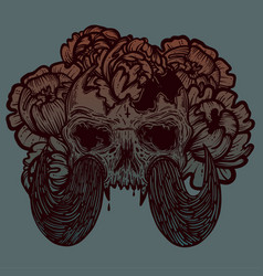 with a human skull with tusks vector image