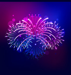 brightly colorful firework show on night sky vector image