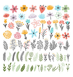 different florals elements for your design project vector image
