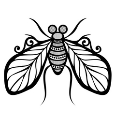 Beautiful Fly Exotic Insect vector