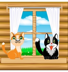 Cats on window vector