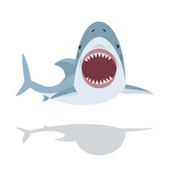 cute flat shark open mouth and teeth vector image