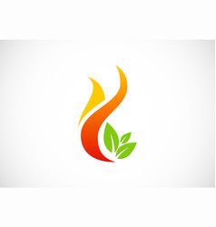 fire flame organic green leaf logo vector image