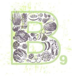 Ink hand drawn fruits and veggies vitamin b9 vector