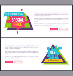 only one day special price premium labels stickers vector image