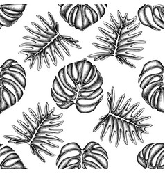 seamless pattern with black and white monstera vector image