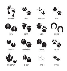 set footprint different animals and vector image