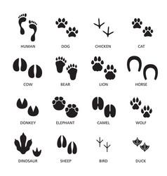 Set footprint different animals vector