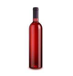 bottle of wine isolated on white background vector image