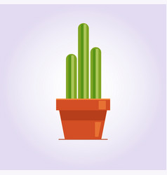 Decorative cactus with prickles on the white vector