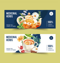 Herbal tea banner design with chamomile roselle vector