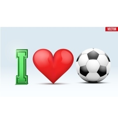 Love football inscription vector