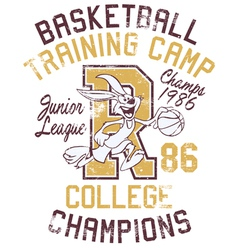 Rabbit basketball training camp vector image