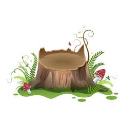 wooden cartoon stump and amanita mushrooms vector image