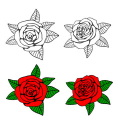 hand drawn roses coloring page vector image