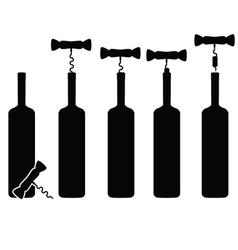 bottle of wine vineyard vector image