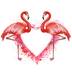Heart made of spray and flamingoes vector