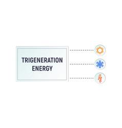 infographics trigeneration vector image