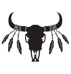 native american bull or cow skull with feathers vector image