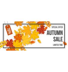 sale frame autumn fallen leaves vector image