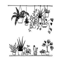 set potted house plants sketch vector image
