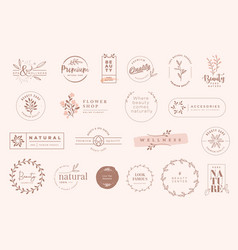 set vintage labels and badges for beauty vector image