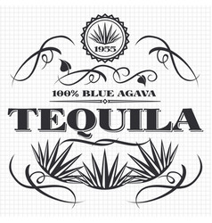 alcohol drink tequila banner design vector image