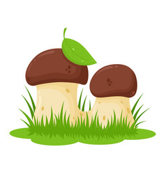 two cartoon mushrooms vector image vector image