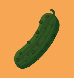 Cucumber fresh and healthy vegetable vector