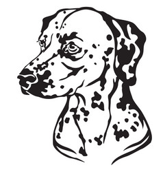decorative portrait of dog dalmatian vector image