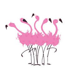 flock of flamingos vector image