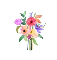 Hand drawn watercolor bouquet Isolated elements vector image