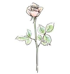Single pink rose flower vector image