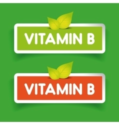 Vitamin B label set vector