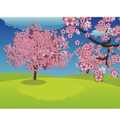 Blooming Sakura Tree on Lawn vector image vector image