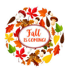 autumn or leaf fall seasonal poster vector image