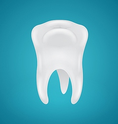 Human teeth on blue background vector image