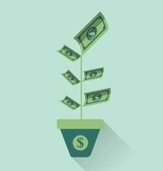 Money leaf plant icon vector