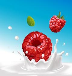 splash of milk with raspberry - with blue ba vector image