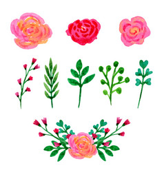 floral watercolor collection flowers and leaves vector image