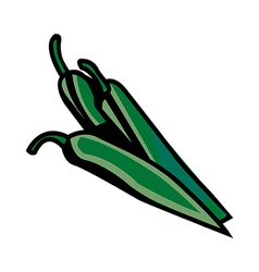 A green chilli is placed vector image