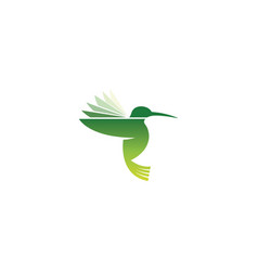 creative hummingbird logo vector image