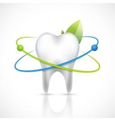 Healthy tooth realistic vector image vector image