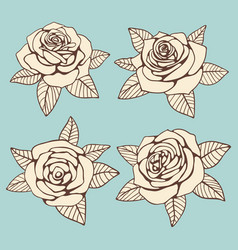 vintage hand drawn roses with leaves design vector image