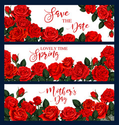 banners with red roses vector image